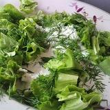 Салат листовой со сметаной