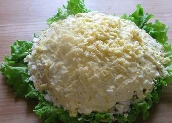 Ābolu salāti ar vistas gaļu, dārzeņiem un šampinjoniem
