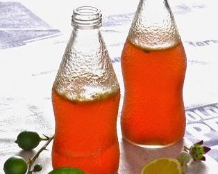 Ābolu limonāde