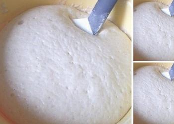 Rauga-kefīra mīkla