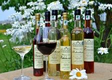 """Vīna darītavas """"Vējkalnietis"""" vīni, brendiji, uzlējumi un liķieri"""